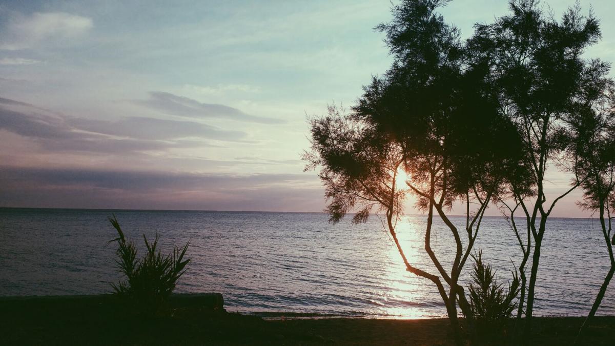 Landscape Lesvos