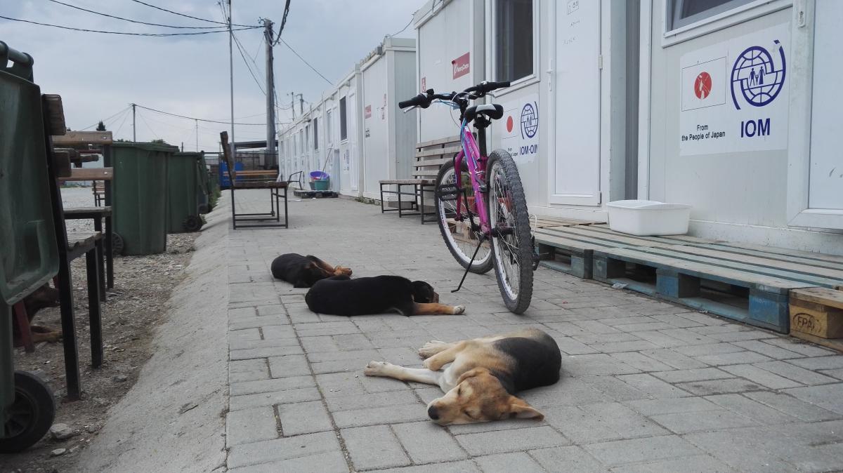 Refugee camp Tabanovce Macedonia