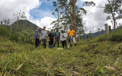 Return to the roots – In the Amazon rainforest in eastern Ecuador